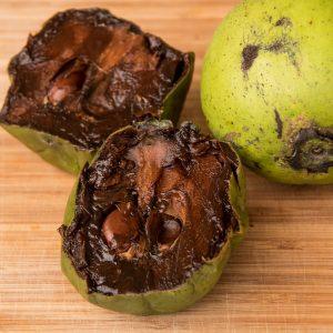 Sapote - Schokoladenpudding- Frucht